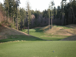Gold Mountain Hole 17 Picture