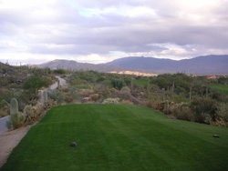 AZ National Hole 11