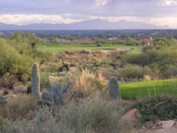Arizona National Hole 13