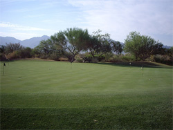 Vistoso Putting Green